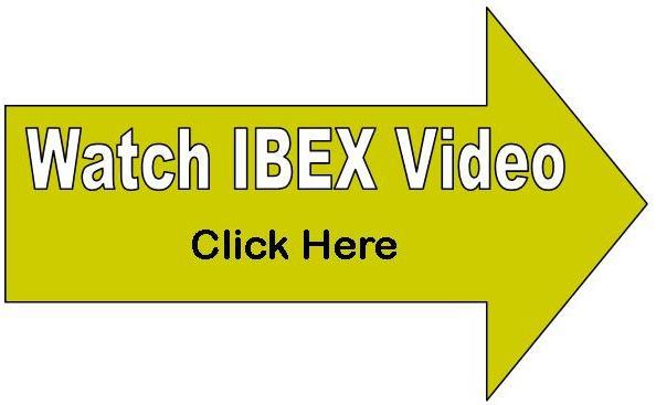 Ibex ultrasound video